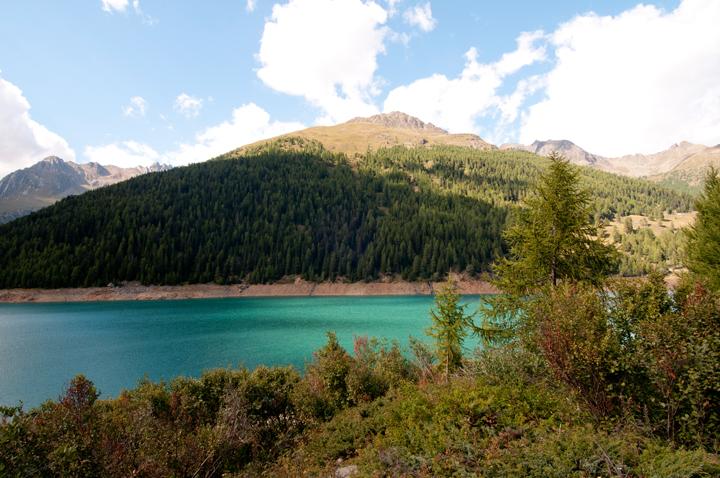 Aggiunti nel sito nuovi scatti di Pejo  e parco nazionale dello Stelvio  (3/6)