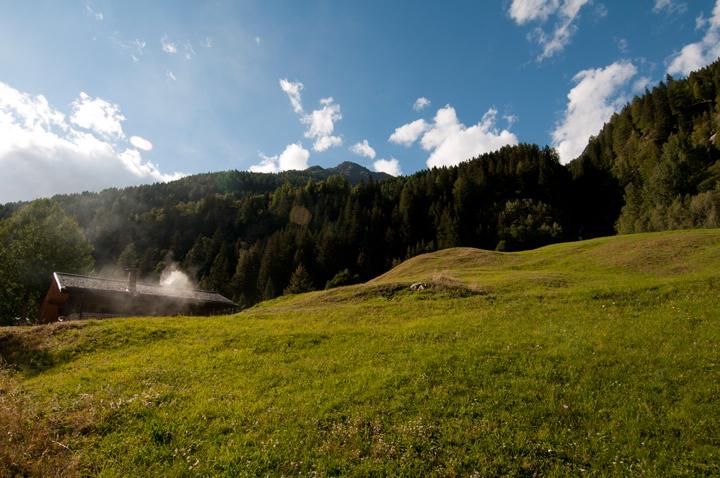 Aggiunti nel sito nuovi scatti di Pejo  e parco nazionale dello Stelvio  (5/6)