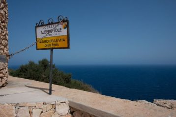 Lampedusa albero del Sole