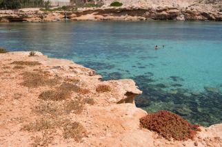 Lampedusa cala Pisana